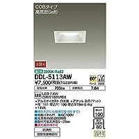 大光電機:ダウンライト(軒下兼用) DDL-5113AW