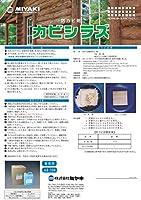木材のカビ防止剤 カビシラズ 4L