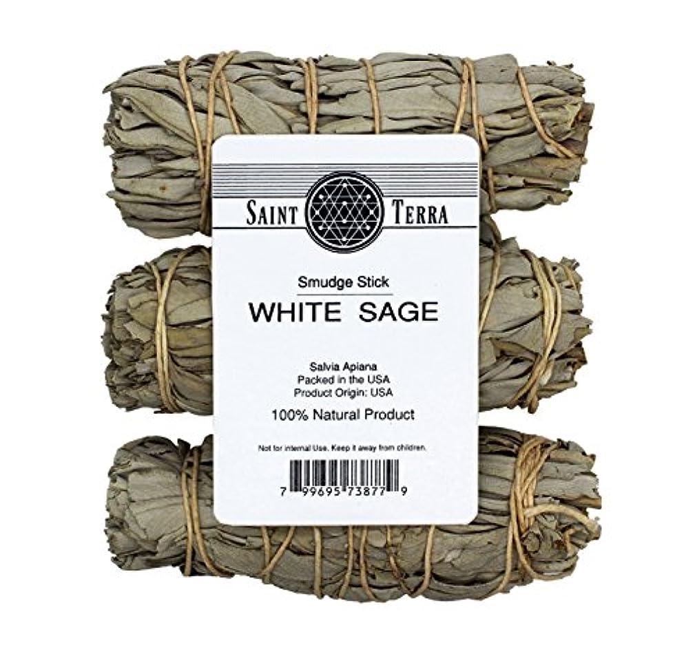好戦的な忠実に皮Saint Terra – パックof 3 MiniホワイトセージSmudge Stick、4 Inches Long