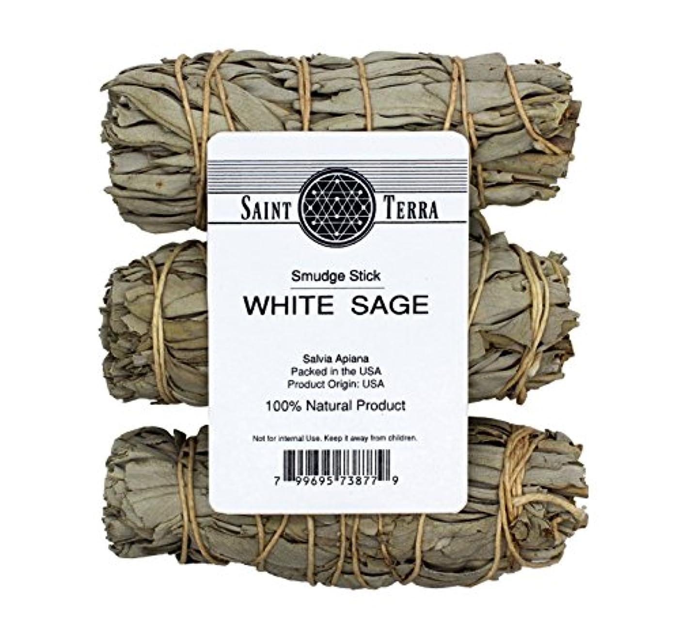 起点ハッピー対角線Saint Terra – パックof 3 MiniホワイトセージSmudge Stick、4 Inches Long
