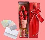 【ELEEJE】 母の日 の プレゼント に 最適 大切な人 へ 感謝 の 気持ち を 伝える 花束 ( ソープフラワー ) と メッセージカード の セット ( バレンタイン ・ ホワイトデー ・ 入学 ・ 卒業 ・ 誕生日 ・ クリスマス など 様々な お祝い の シーン に 最適 ) 赤5本