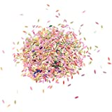 Perfeclan 約15g コンペティ 紙吹雪 ウェディング パーティー用品 多色