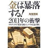 金は暴落する!2011年の衝撃 ロスチャイルド黄金支配のシナリオを読み解く
