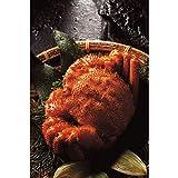 かに お取り寄せ ご当地グルメ 北海道産ボイル毛蟹2尾 計660g