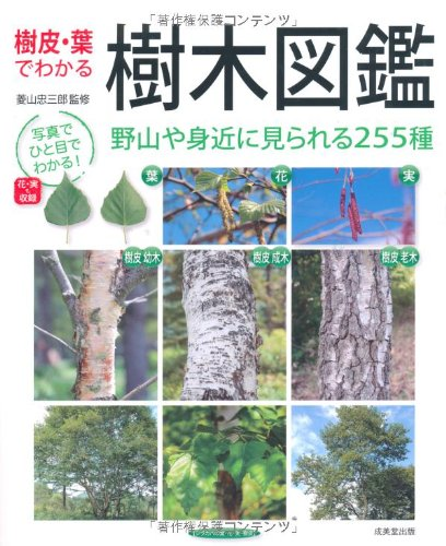 成美堂出版『樹皮・葉でわかる 樹木図鑑』