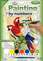 """Junior Small Paint By Number Kit 8.75""""X11.75""""-Bamboo & Parrots (並行輸入品)"""