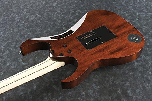 Ibanez / Steve Vai Signature Model JEM77WDP-CNL Charcoal Brown Low Gloss アイバニーズ