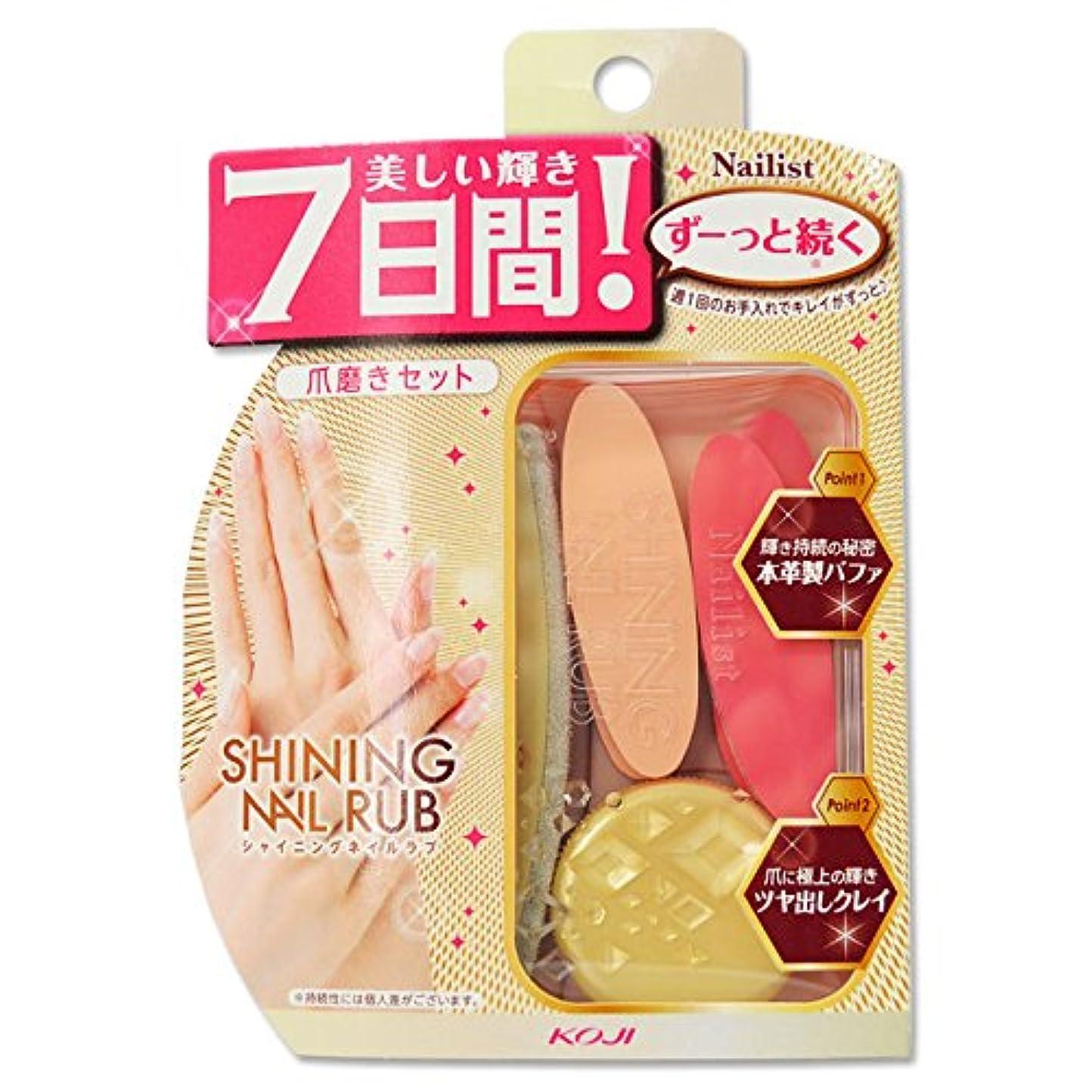 致命的災難製品コージー ネイリスト シャイニングネイルラブ 爪磨きセット 2AL6811