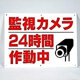 「 監視 カメラ 24時間 作動中」 注意 パネル 看板 幅40cm×高さ30cm 大きな文字でわかりやすい