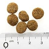 ナチュラルハーベスト セラピューティックフォーミュラ フラックス(結石ケア用食事療法食) 1.47kg 画像