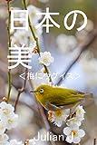 日本の美 梅とウグイス(メジロ)