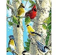 数字によるzddyxペイントバーチバードDiy絵画デジタル手塗りによる布の絵画布の絵画モダンウォールアート絵ギフト40x50cm(16x20in)