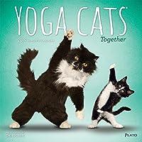 Yoga Cats Together 2019 Calendar