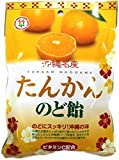 たんかん のど飴 100g 竹製菓 沖縄名産のタンカンにハーブを加えてスッキリさわやかに仕上げたキャンディー 沖縄土産におすすめ