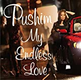 My Endless Love / PUSHIM