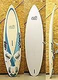 276cm ウインドサーフィン ボード MISTRAL [WHITE/BLUE] FREERIDE SUPER VISION ウインドボード WIND SURFIN