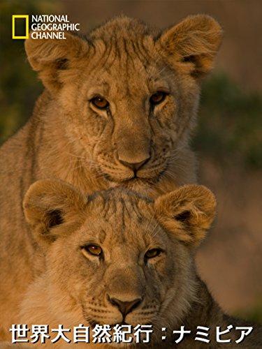世界大自然紀行:ナミビア