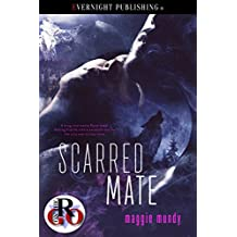 Scarred Mate (Romance on the Go)