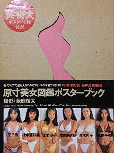 原寸美女図鑑ポスターブック -