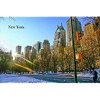 【アメリカの観光地ポストカードのAIR】「New York」ニューヨークセントラルパークの葉書はがきハガキ photo by MIRO