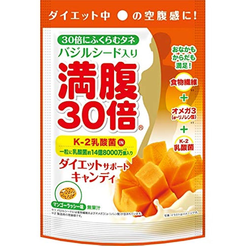 未使用通訳トーン満腹30倍 ダイエットサポートキャンディ マンゴーラッシー 42g