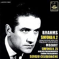Celibidache Conducts Mozart