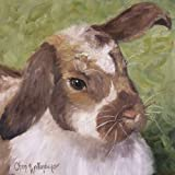 """Pam the Bunny by Cheri Wollenberg???Gicleeキャンバスアートプリント 24"""" x 24"""" CP-POD-48-CW1066-24x24"""