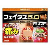 【第2類医薬品】フェイタス5.0温感大判サイズ 14枚入
