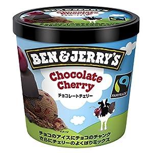ベン&ジェリーズ チョコレートチェリー 120ml×36個