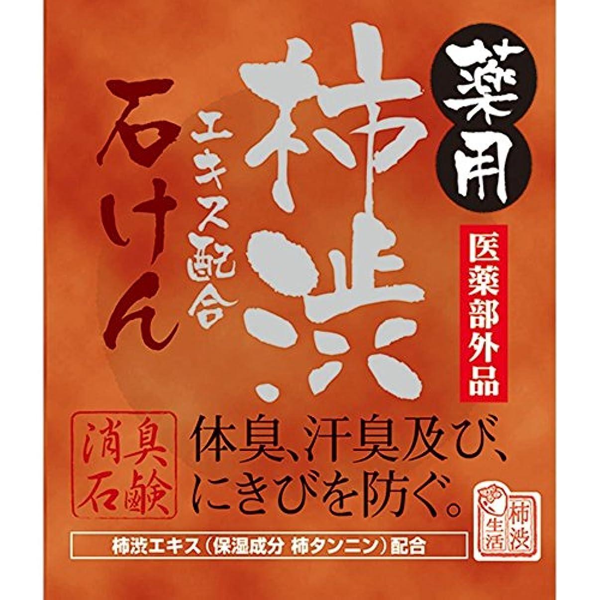 スズメバチ思い出させる進化薬用柿渋石けん 100g[医薬部外品]