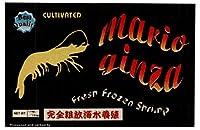 養殖 BT 海老 MARIO GINZA 4/6 サイズ HF 900g 【冷凍】/MARIO GINZA(12箱)