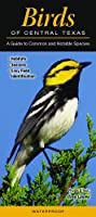 Birds of Central Texas: A Guide to Common and Notable Species (Quick Reference Guides)