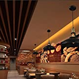 Zyurong【LEDフィラメント電球付き】ペンダントライト 鉄芸 真鍮 シーリングライト 照明器具 レトロ アンティーク調 シンプル おしゃれ 可愛い 欧米風 工業風 E27電球に適用 ダイニング 食卓 玄関 居間 和室 led対応
