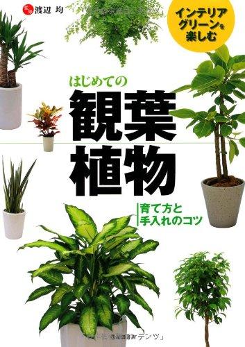 インテリアグリーンを楽しむ はじめての観葉植物-育て方と手入れのコツ (池田書店の園芸シリーズ)
