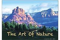 冷蔵庫用マグネット Fridge Magnet Kitchen G. Huber the art of nature