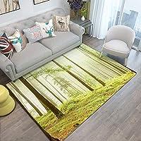 FASTER ラグカーペット 絨毯カーペット おしゃれ 北欧 洗える 長方形 四角 ラグマット 茶室 応接室 寝室 シンプル 人気 カーペット 絨毯 リビング
