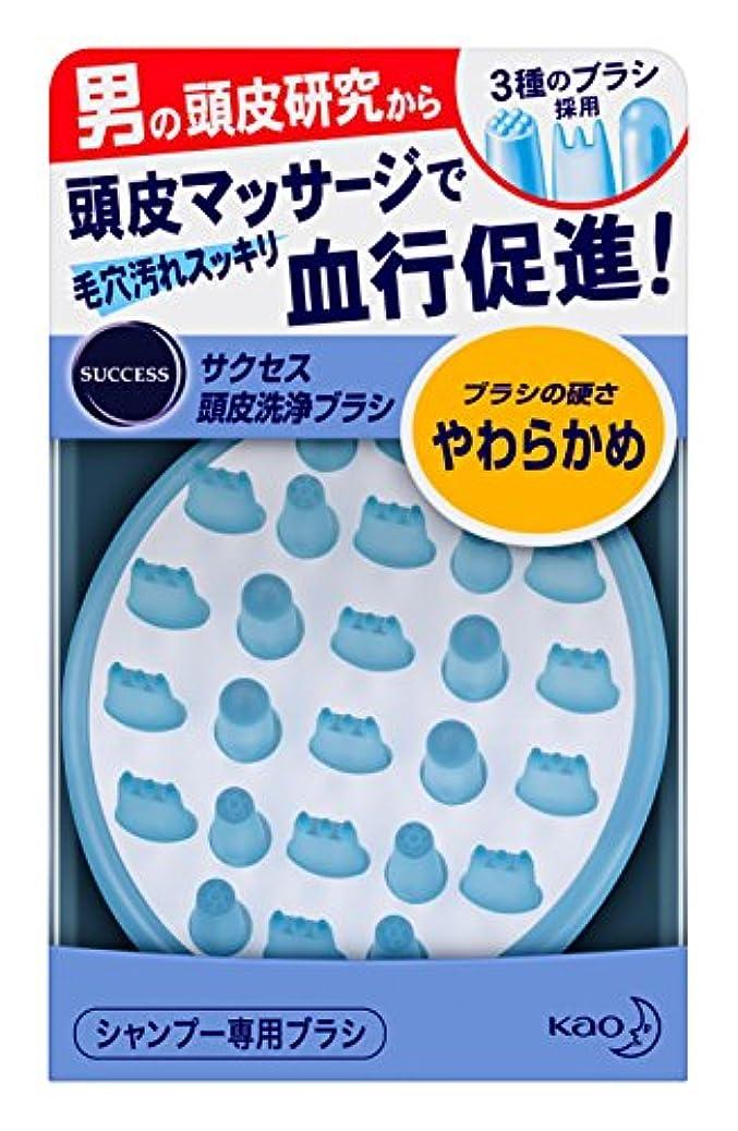 評決セットアップパンフレットサクセス 頭皮洗浄ブラシ やわらかめ
