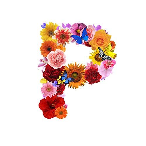 一文字からの ステッカー 花 フラワー Mサイズ 5cm×5...
