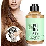 シャンプー、髪の毛の栄養補給、髪の毛の根元の栄養補給、すべての髪のタイプの男性と女性のための抜け毛の栄養補給用シャンプー