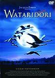 WATARIDORI [DVD] 画像