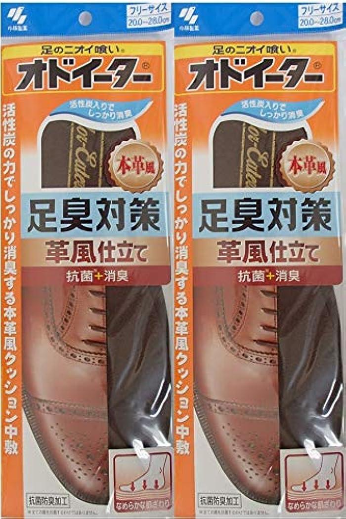 オッズラリートレイオドイーター 足臭対策 革風仕立て インソール フリーサイズ20cm~28cm 2足セット