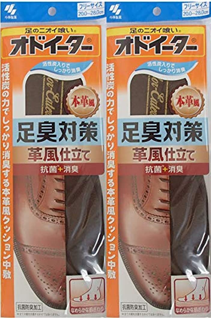 プロテスタントスキーム上げるオドイーター 足臭対策 革風仕立て インソール フリーサイズ20cm~28cm 2足セット