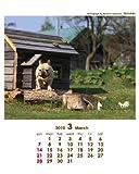 2010年夏彦の日々/坂下康裕 卓上カレンダー  C-274-NA 画像