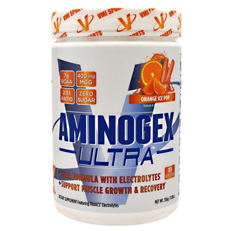 VMI Sports Nutrition - Aminogex Ultra BCAA (オレンジアイスポップ, 30回分) [海外直送]