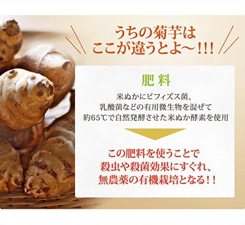 キクイモ 菊芋 イヌリン 菊芋粉末 シンバイオティクス食品 熊本県産 腸内フローラ 糖尿病食 菊芋パウダー 100g