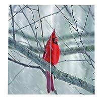 Bonni 装飾鳥カーテンウィンドウカーテンパネルドレープ漫画スタイルウィンドウトリートメントドレープ150 * 166cm