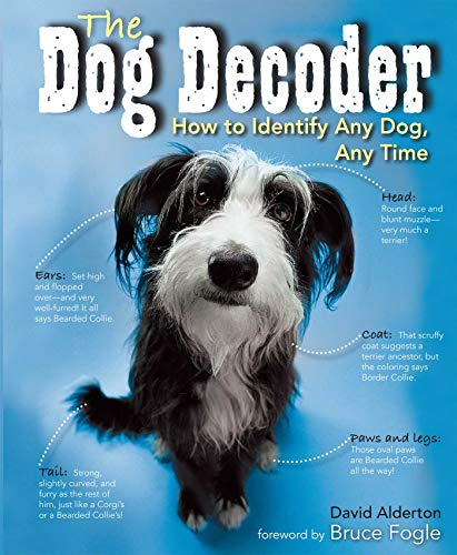 Dog Decoder: How to Identify Any Dog, Any Time (English Edition)