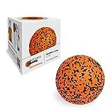 ブラックロール8050090セルフマッサージローラーオレンジブラックボール(取扱説明書付き)[英語は不可] 12 cm
