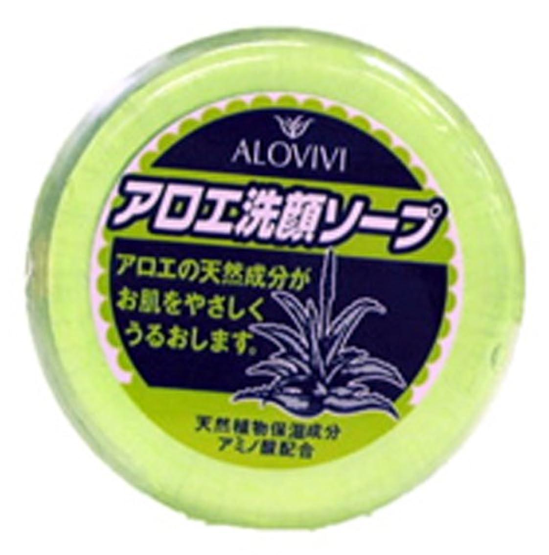クレーター腹部散るアロヴィヴィアロエ洗顔ソープ 100g