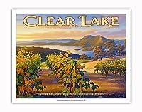クリア・レイク・ワイナリー - ブラスフィールズ・エステート・ワイナリー - ノースコーストAVAブドウ園 - カリフォルニアワインカントリーアート によって作成された カーン・エリクソン - アートポスター - 28cm x 36cm